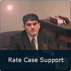Rate Case Support